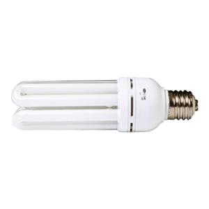 전구식형광램프